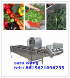 Bolla Fruit e Vegetable Washing Machine
