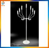 Fremder Entwurfs-galvanisierenmetalldekorative Fußboden-Lampe