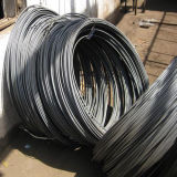 65mn High Carbon Cold - нарисованное Spring Steel Wire