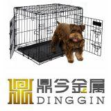 Comodidad y casa de perro de la caja fuerte