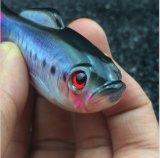 جديدة تصميم صيد سمك فتّاح صيد سمك نوع فتّاح