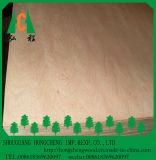 madera contrachapada de madera de la suposición de la chapa de 4.5m m
