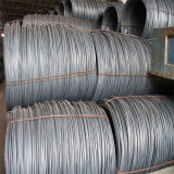 SAE1070 Cold -引かれたSpring Steel Wire Rod