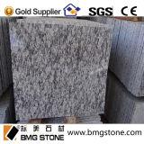 Mattonelle di pavimento naturali delle bramme del granito della Cina G603/G654/G664/Black