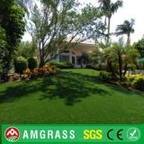 Allmay Artificial TurfおよびLandscapingの庭Grass