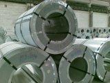 Bobina d'acciaio laminata a caldo inossidabile