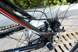 Bicicleta de montanha elétrica de 26 polegadas para os homens (YK-EB-006)