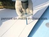 Tpo manient séparément la membrane de imperméabilisation résistante à l'humidité de feuille de toiture
