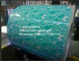 Цинк PPGI/HDG/Gi/Secc Dx51/горячие окунутые гальванизированные стальные катушка/лист