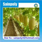 Invernadero agrícola de la película del Multi-Palmo para el melón de Hami