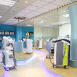 Equipo de belleza IPL (IPL Hair Removal Equipment HS-320 IPL + RF)