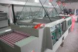 Macchina automatica del PWB della macchina acquaforte del PWB Ge-Sk-9