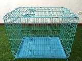 Fabrik-Zubehör-große im Freienhunderahmen/geschweißter Draht-Hundehundehütte-/Haustier-Gehäuse-/Haustier-Rahmen