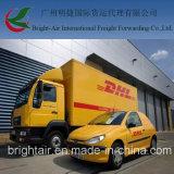 DHL 출하 비율 특사 중국에서 급행 소포 배달 업무 세계전반 (볼리비아를 포함하십시오)