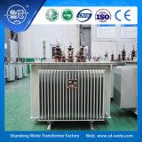 Normes S13, transformateur immergé dans l'huile d'IEC/ANSI de distribution du plein cachetage 6kv triphasé