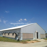 Casas de pollo de acero de la estructura de acero de la luz de la fabricación de la construcción