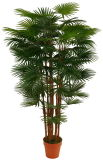 Искусственние заводы пальмы Ap017kg-180cm