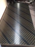 15mm of Brown's Dynea Film Of faced Of plywood of with Of logo