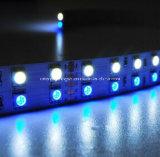 SMD 5060+1210 RGB+W 120 LEDs/M IP65 유연한 지구