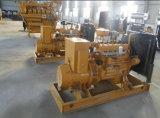 Jogo de gerador da potência do biogás 100kw do gás natural da biomassa