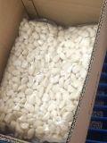 Karton, der frischen abgezogenen Knoblauch (180-220grains/kg, packt)