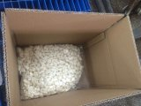 Karton die Vers Gepeld Knoflook inpakken (180-220grains/kg)