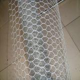 """動物のケージ: 3 """" - 6 """"電流を通された六角形の金網"""