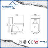 D'une seule pièce conjuguent la toilette en céramique affleurante dans le blanc (ACT7911)