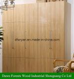 Комод/Armoire шкафа раздвижной двери