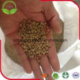 Китайца чечевицы GMO Non зеленые
