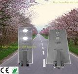 12.8V 40W todo en una luz de calle solar del jardín integrado del LED