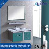 Einfacher Entwurfs-unfertige Badezimmer-Stahleitelkeit