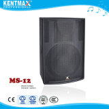 Vente en gros Top China Supplier Built in Amplifier Speaker avec USB / SD