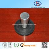 De Met een laag bedekte Fabriek van ISO van Permanent Rubber/Deklaag/het Behandelen van de Pot/de Tang van de Magneet van het Neodymium