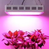 La planta de alta potencia de 1000W crece luces
