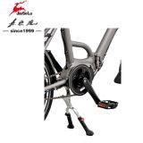 """20 """" E-Vélo sans frottoir d'aluminium de moteur de la batterie au lithium de l'alliage 36V 25W"""