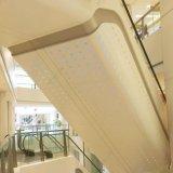 potencia decorativa 3D que cubre 20 años de la garantía de techo perforado/el panel del aluminio insonoro incombustible