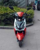 "1000W motocicleta elétrica, bicicleta elétrica, ""trotinette"" elétrico"