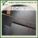 Het antislip Film Onder ogen gezien Triplex van de Eucalyptus van het Triplex/het Concrete SlipTriplex van het Triplex