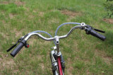 Bicicleta elétrica da cidade elétrica do freio de disco En15194 da bateria de lítio da bicicleta 250W Ebike