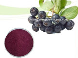 100% 순수한 자연적인 까만 Chokeberry 추출 안토시아니딘 1%에서 25%