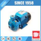 Pompa ad acqua elettrica ad alta pressione di mini formato di serie della dk