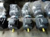 信頼220V/230V/240V/400V/415V 3つの段階の電動機