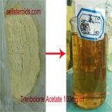 Prueba esteroide E CAS 315-37-7 de Enanthate de la testosterona del polvo de la prueba del Bodybuilding