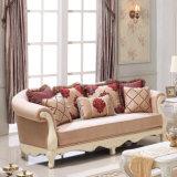 Sofà classico del salone ricoperto nel tessuto del velluto per la casa