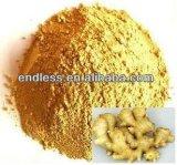 La poudre normale d'extrait de gingembre soulagent des toux et des froids de bronchite