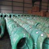 Fil d'acier galvanisé par ASTM normal pour ACSR 1.57mm-5.00mm