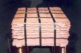 판매 구리 최신 판매 구리 음극선 99.99 급료 a에 있는 구리 음극선 99.99% 순수성