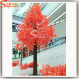 중국 직업적인 도매 공급자 인공적인 단풍나무