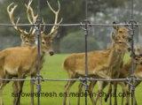 Sailin Caldo-Ha tuffato la rete fissa dei cervi della rete fissa del bestiame